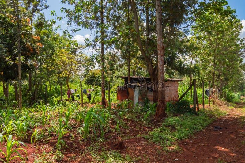 Chambre au Kenya rural, Afrique Une maison au Kenya rural, Afrique image libre de droits