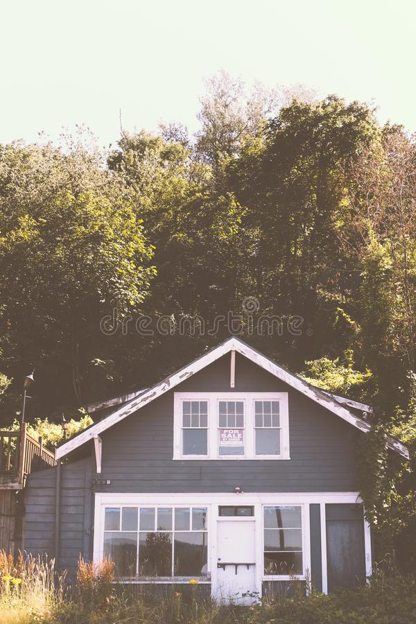 Chambre construite dans une forêt avec la verdure à l'arrière-plan photographie stock libre de droits