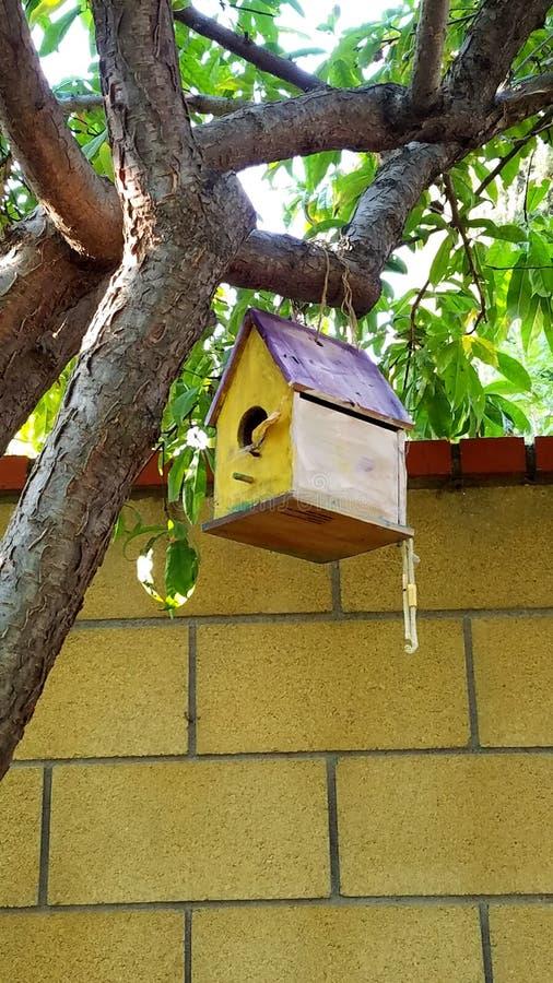Chambre d'oiseau image stock