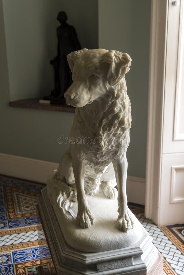Chambre d'Osborne de statue de chien photo libre de droits