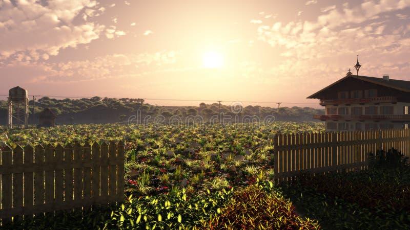 Chambre de ferme d'été dans le coucher du soleil illustration de vecteur