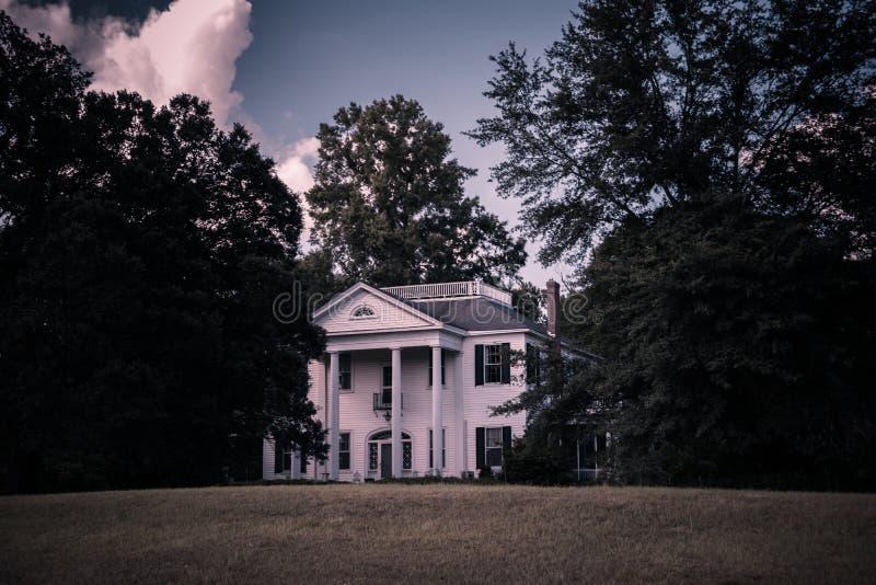 Chambre de plantation images libres de droits