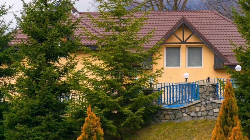 Chambre derrière de beaux pins image libre de droits