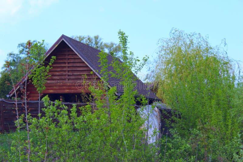 Chambre en bois dans Forest Nature, concept de voyage photos stock