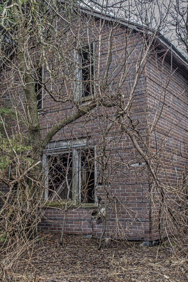 Chambre hantée rampante dans les bois image stock