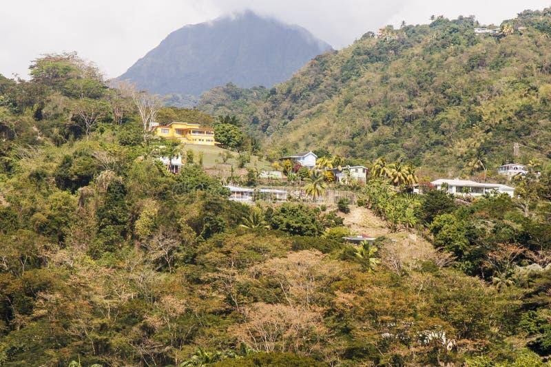Chambre jaune sur la côte tropicale image libre de droits