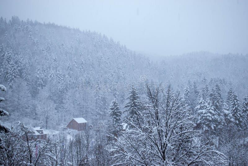 Chambres au pied de la forêt en hiver photographie stock