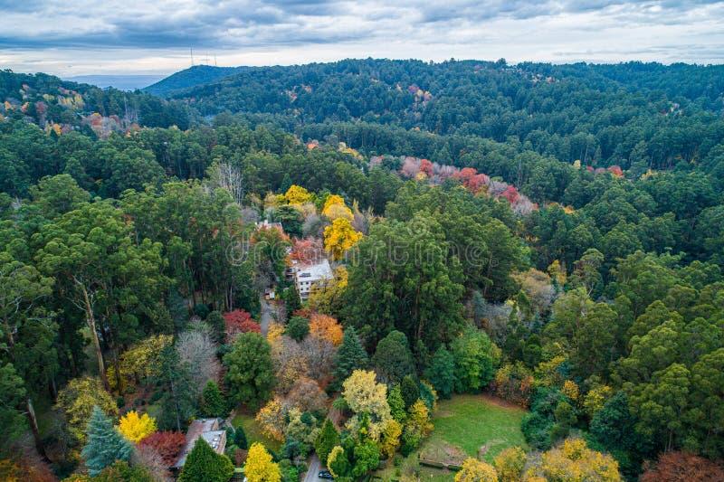 Chambres parmi le feuillage luxuriant en automne photographie stock