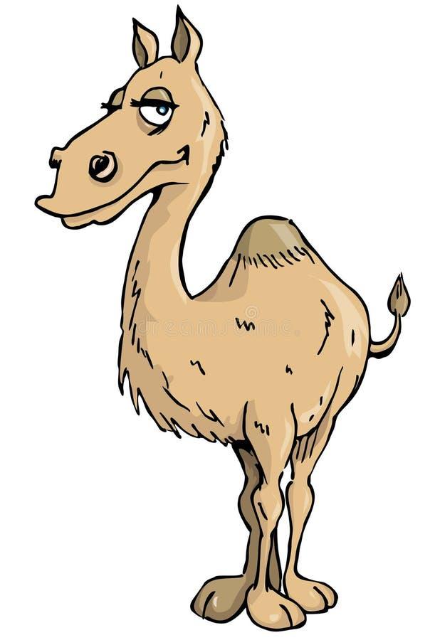 Chameau de dessin anim illustration de vecteur - Dessin de chameau ...