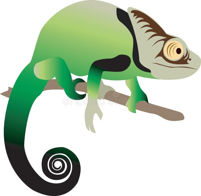 Chameleon Royalty Free Stock Photography