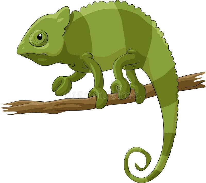 Chameleon stock illustration