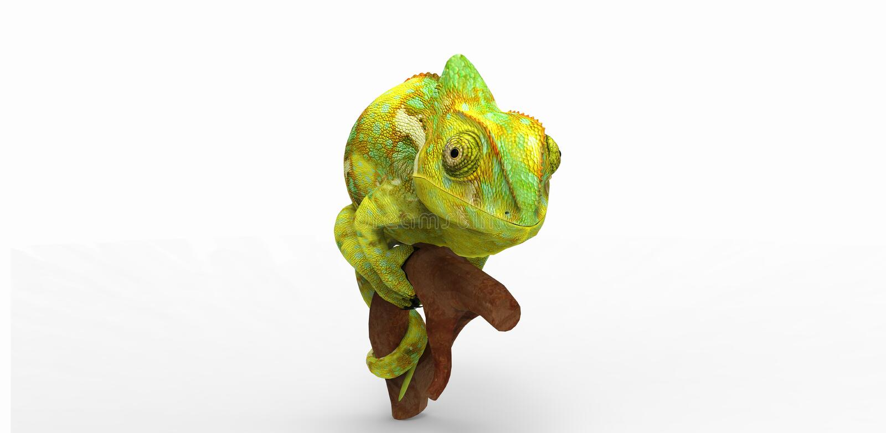chameleon ilustração stock