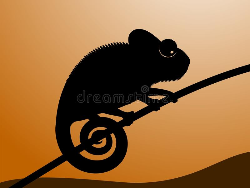 Chameleon. Vector illustration of chameleon. Black contour of a chameleon on a sunset background vector illustration