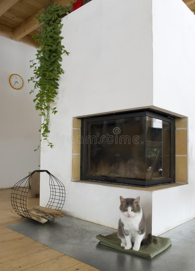 Chaminé e um gato. imagem de stock