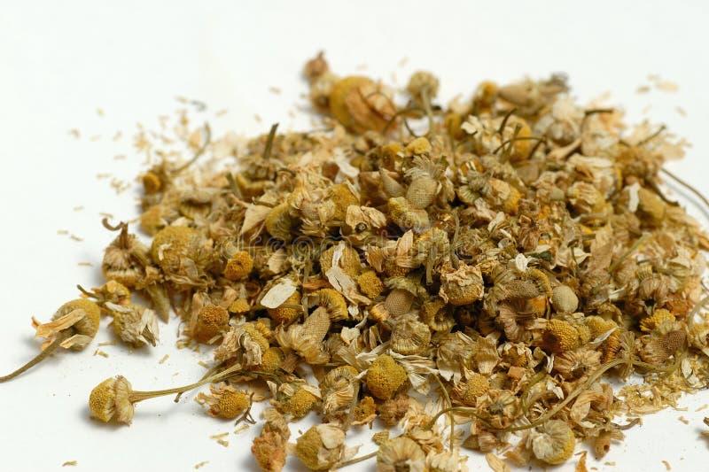 chamomile ξηρός ανθών στοκ εικόνες
