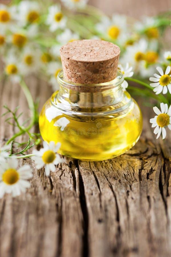 chamomile πετρέλαιο στοκ φωτογραφίες με δικαίωμα ελεύθερης χρήσης