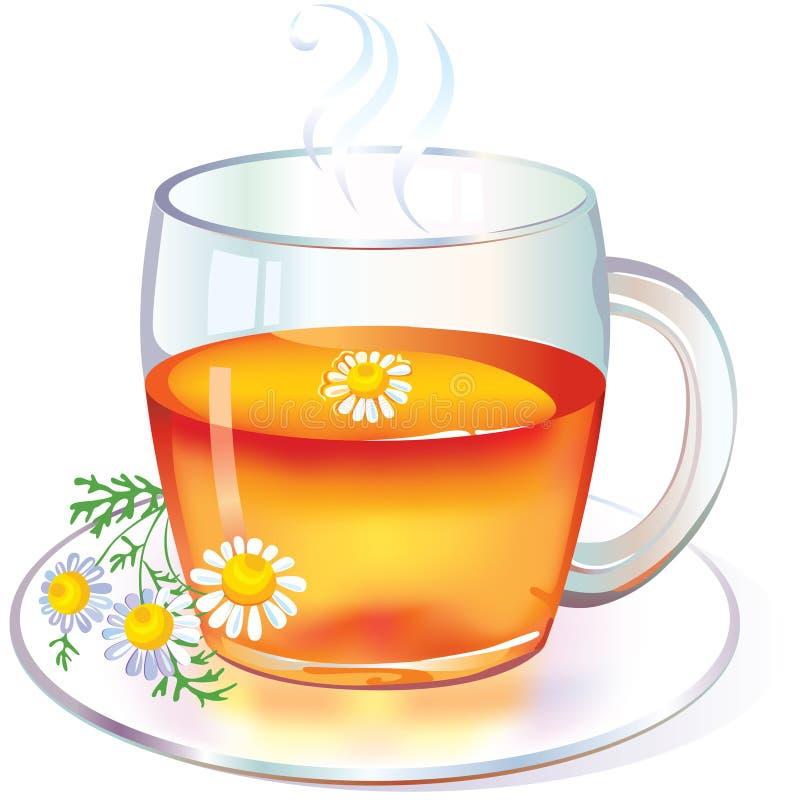 chamomile τσάι απεικόνιση αποθεμάτων