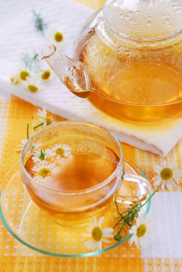 chamomile τσάι στοκ φωτογραφίες με δικαίωμα ελεύθερης χρήσης