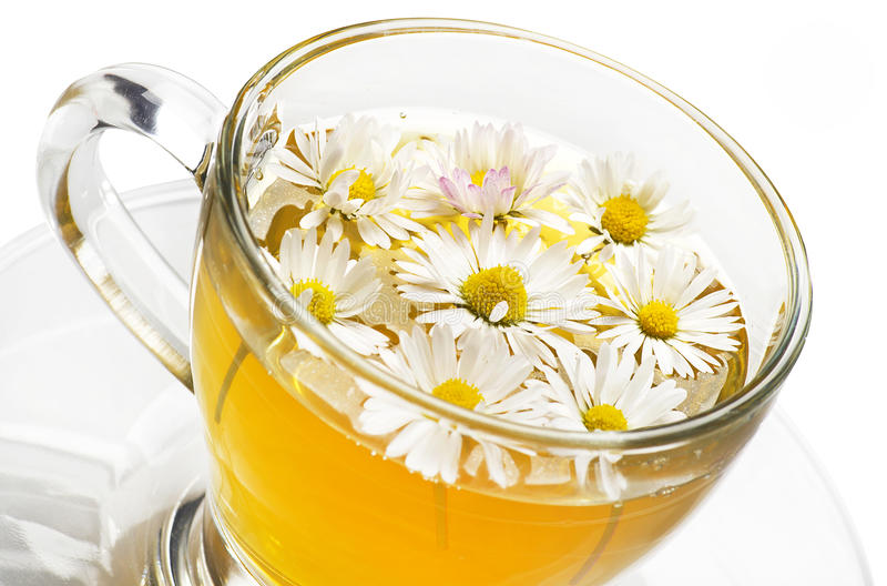 Download Chamomile stock photo. Image of photograph, herbal, drink - 25535502