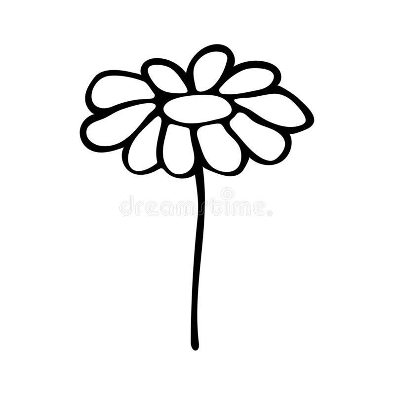 Chamomile black and white illustration in doodle style 3 stock illustratie