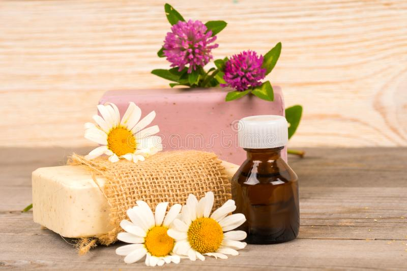 Chamomile and clover handmade soap and essential oil in small bottle. Spa or wellness composition or concept royalty free stock photography