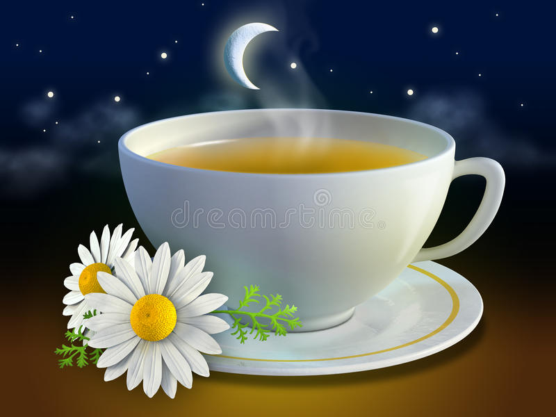 Chamomile cup. With some flowers and a night background. Digital illustration royalty free illustration