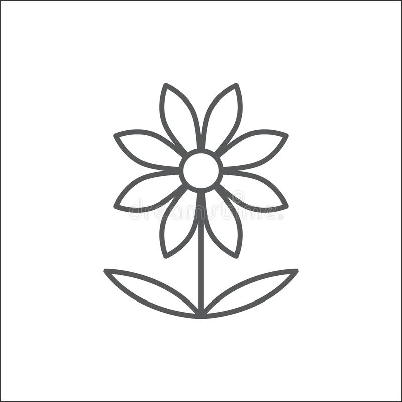 Chamomile flower editable outline icon - pixel perfect symbol of daisy-like plant in thin line art style. stock illustration