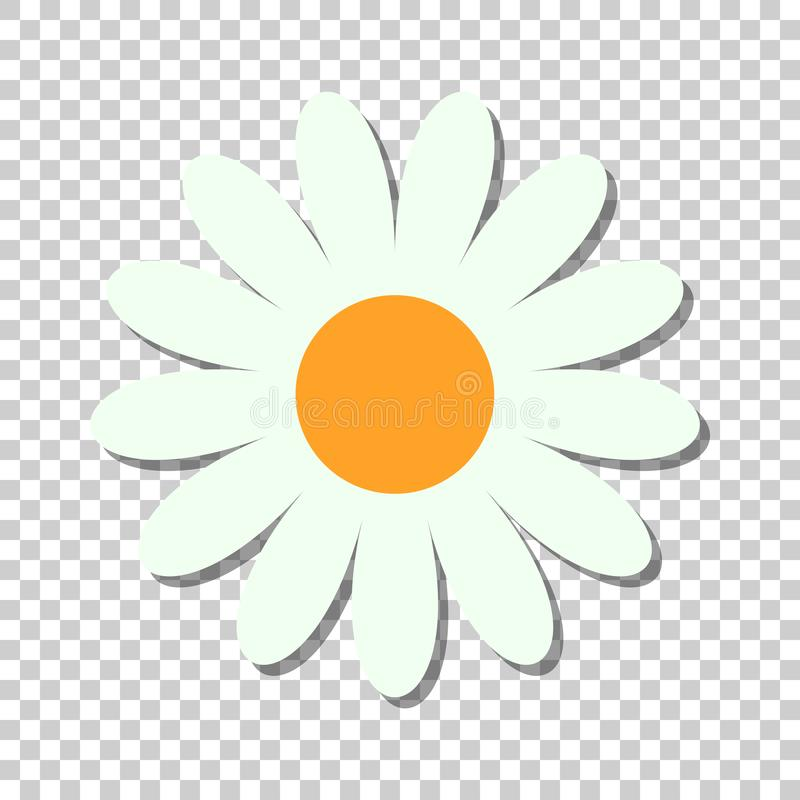 Chamomile flower vector icon in flat style. Daisy illustration o. N isolated transparent background. Camomile sign concept stock illustration
