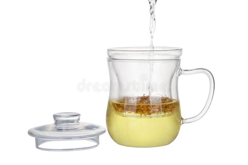 Chamomile herbata zdjęcia stock