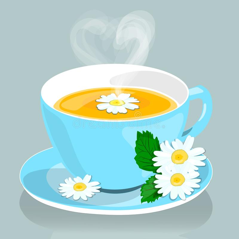 Chamomile Chamomile herbata Pożytecznie leczniczy napój od kwiatów chamomile wektor obrazy royalty free
