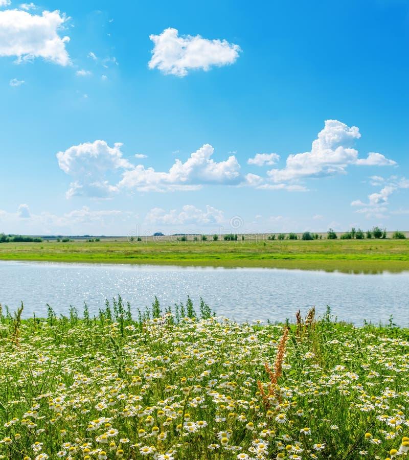 Download Chamomile I Zieleń Krajobraz Z Rzeką Obraz Stock - Obraz złożonej z chmurny, światło: 28953537
