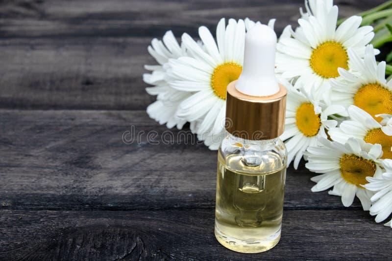 Chamomile istotny olej w szklanej butelce z pipetą jest na stole blisko chamomile kwiatów fotografia stock