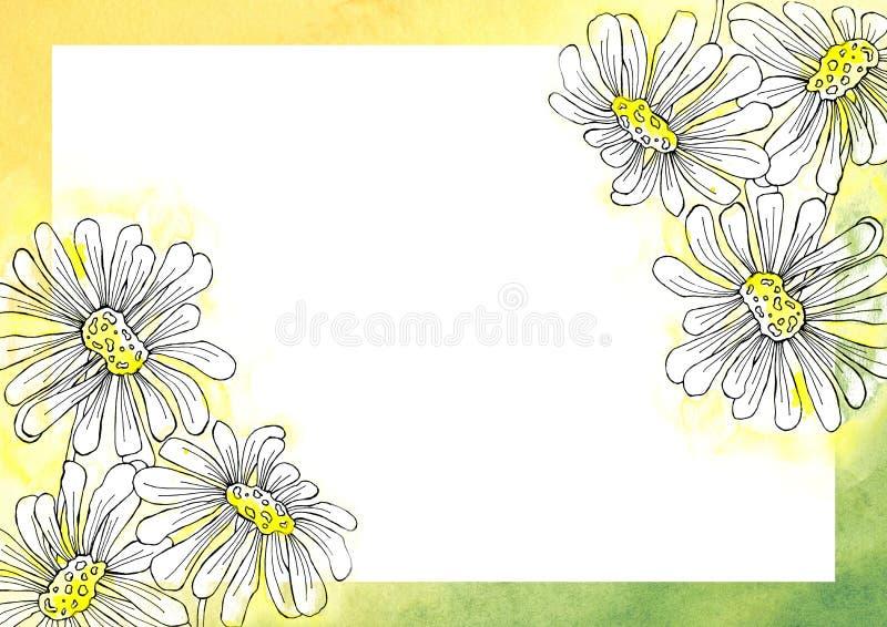 Chamomile kwitnie w grafika stylu Projekt tło, plakat, karty, powitania, śluby, zaproszenia, reklama, sztandar ilustracji