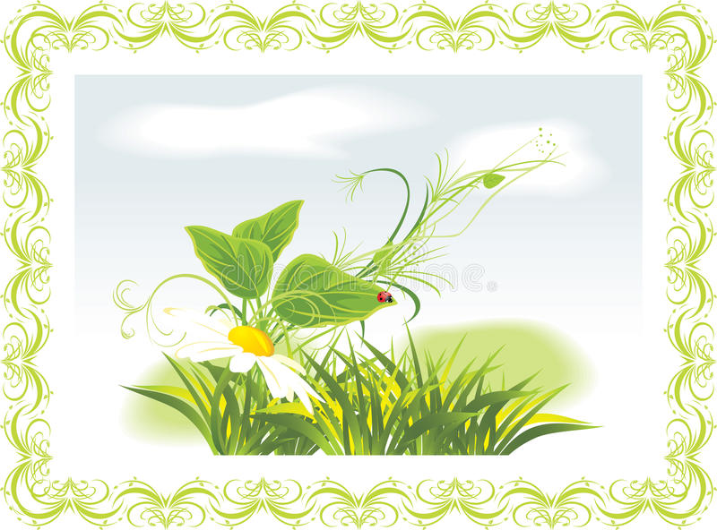 Download Chamomile And Ladybird Among Grass In The Frame Stock Vector - Image: 19255267