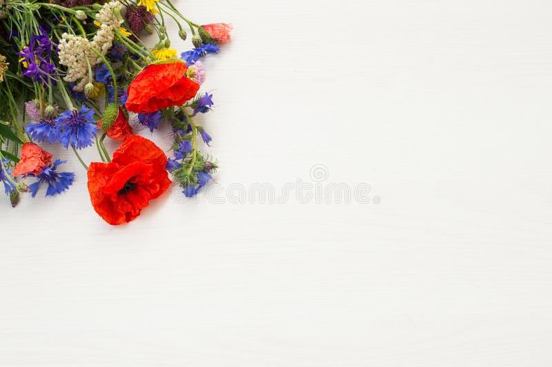 Chamomile, maczek, chabrowy, krwawnik i inni piękni lata pola kwiaty na drewnianym tle zdjęcie stock