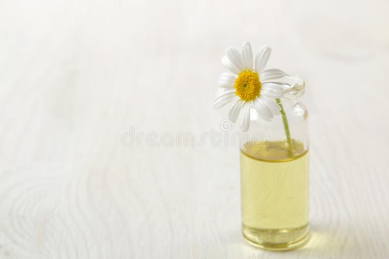 Chamomile. Medicinal little flowers of chamomile with aroma oils on a white wooden table. space for text royalty free stock images