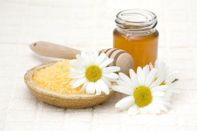 chamomile miodu zdrój zdjęcie royalty free