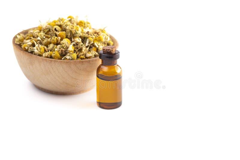 Chamomile olej z Wysuszonymi Chamomile kwiatami Odizolowywającymi na Białym tle zdjęcie stock