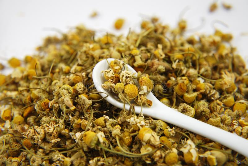 Chamomile with spoon royalty free stock photography
