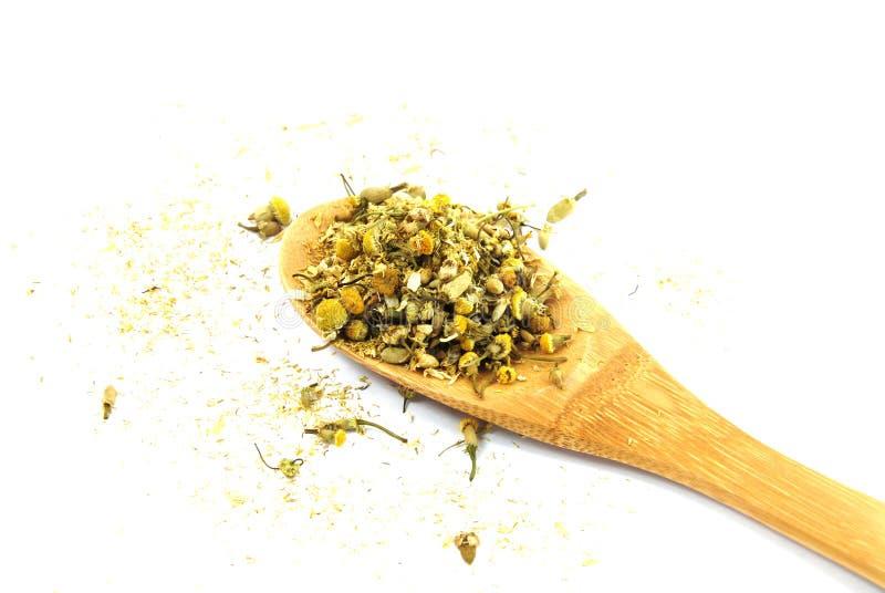 chamomile suchy obrazy stock