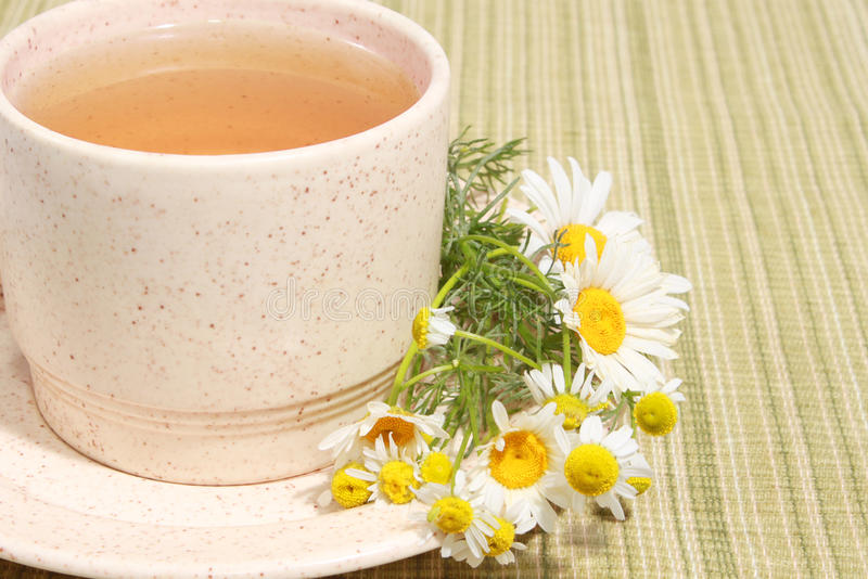 Download Chamomile tea stock photo. Image of health, relax, daisy - 14701022