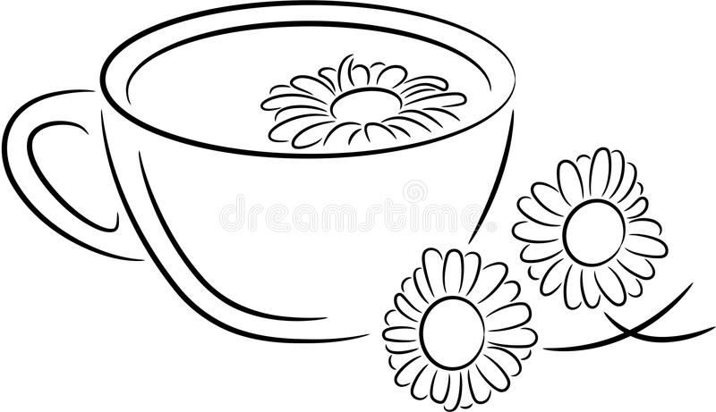 Chamomile tea royalty free illustration