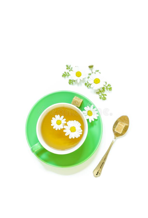 Chamomile tea in cup isolated on white background. royalty free illustration