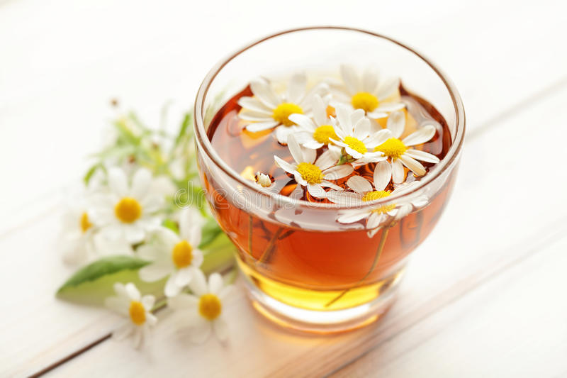 Chamomile tea and flowers royalty free stock photography