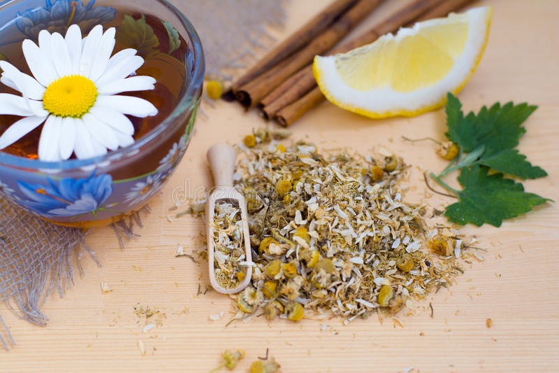Chamomile tea with lemon, cinnamon and mint royalty free stock image