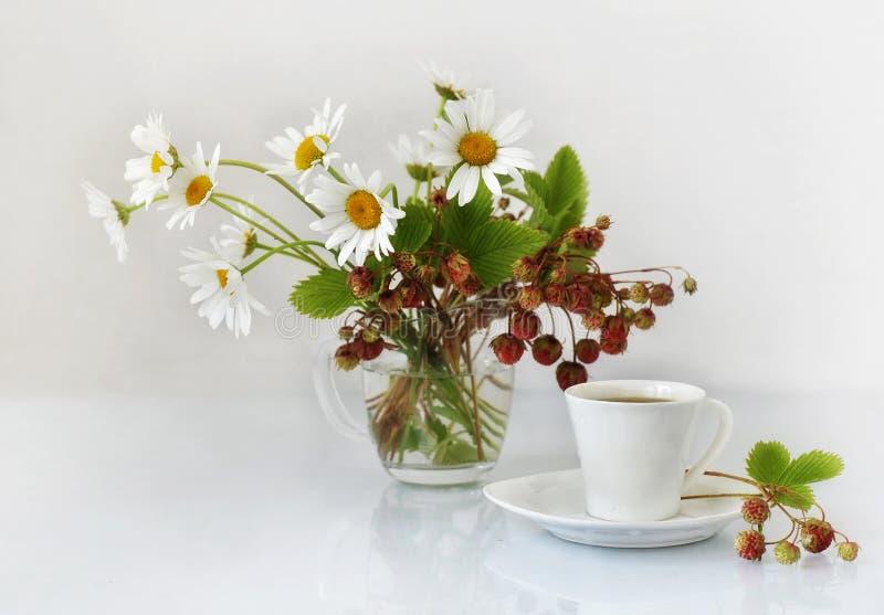 Chamomile, truskawka i filiżanka kawy. obrazy royalty free