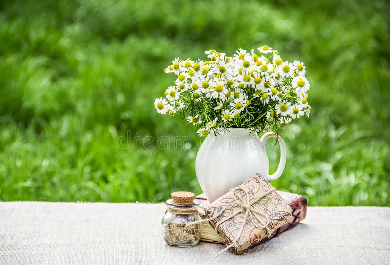 Chamomile in vase. Gift box and summer flowers on natural green background. royalty free stock photography