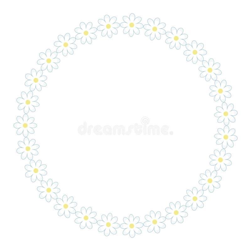 Chamomile wianku round kwiecistego światła białego świeży prosty żółty średni wektor odizolowywający na białym tło przedmiocie ilustracji