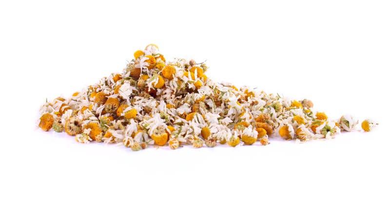 chamomille花的整洁的堆 免版税库存图片