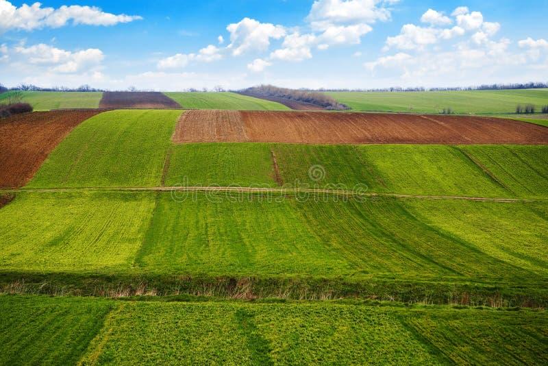 Terres arables photos libres de droits